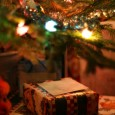 Weihnachten – das Fest der Liebe und der Geschenke naht mit großen Schritten. Der Tannenbaum muss bald gekauft werden. Die Dekorationen haben schon angefangen – an den Fenstern der Häuser […]